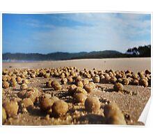 Alien Landscape - Byron Bay Poster