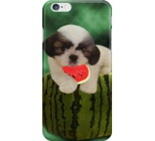 SUMMER TIME SHIH TZU PUPPY ENJOYING THE TASTE OF WATERMELON,JOURNAL--PICTURE,PILLOW,TOTE BAG,ECT.. iPhone Case/Skin