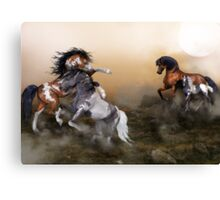 Fighting For His Names Sake Canvas Print