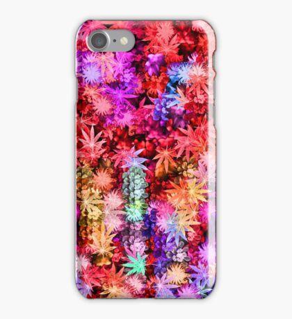 Tropic Spice iPhone Case/Skin
