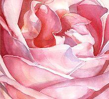 Rose from Balboa Park by Yevgenia Watts
