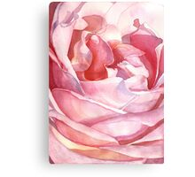 Rose from Balboa Park Canvas Print