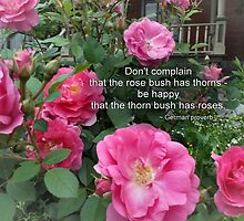 Rose Bush Happy Pink Roses German Proverb by M Sylvia Chaume