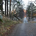 Robert Mauritz Lane by tanmari