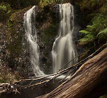 Hogarth Falls, Tasmania by vlora