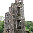 Blarney Castle Tower by CFoley