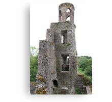 Blarney Castle Tower Canvas Print