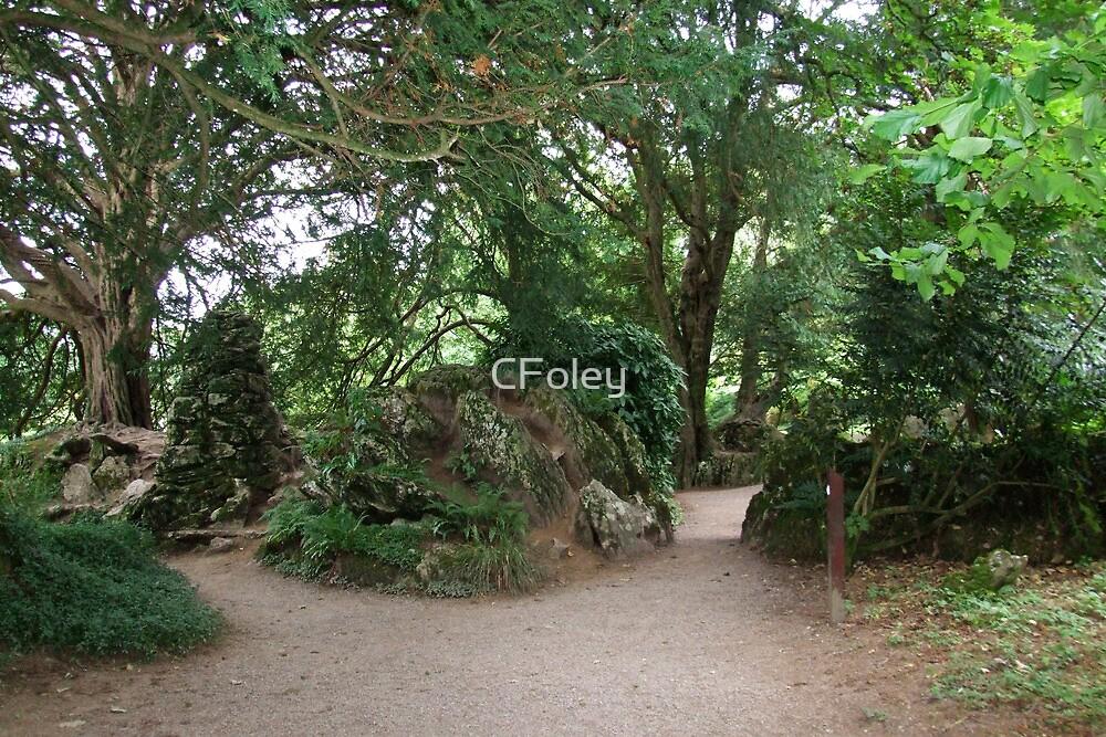 Witch's Kitchen Rear View, Blarney, Cork, Ireland by CFoley