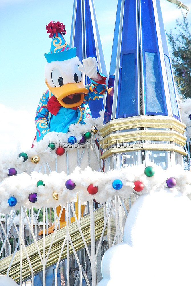 Donald Duck by Elizabeth  Hubbard
