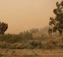 Outback Smoke by Bob Hardy