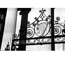 Hibernian Iron & Columns No. 1 Photographic Print