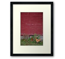 Chickens in the Barnyard Framed Print