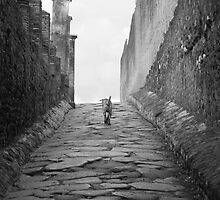 Pompeii Prowl by Terra Berlinski