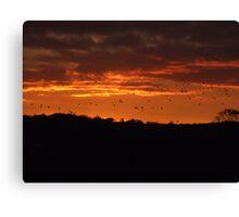Birds in a Fire Sky Canvas Print