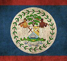 Old and Worn Distressed Vintage Flag of Belize by Jeff Bartels