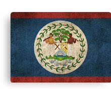 Old and Worn Distressed Vintage Flag of Belize Canvas Print