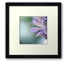 ...I let it fly away, and away... Framed Print