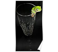 Champagne Frog Poster