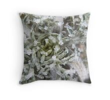 Little Treasures Throw Pillow