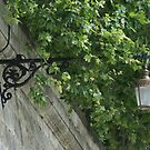 Lamp above the Tiber River, Rome by BronReid