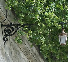 Lamp above the Tiber River, Rome by BronReid