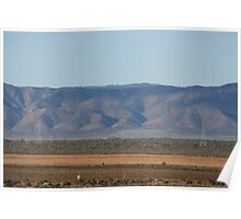 Redbanks facing the Flinders Ranges Poster