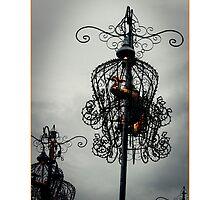 Bird Cage by Donnalee
