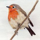 Robin Redbreast by Pamela Stirling