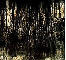Sunset Tree Reflections Abstract Light Patterns by M Sylvia Chaume