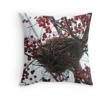 Christmas nest, abandoned Throw Pillow