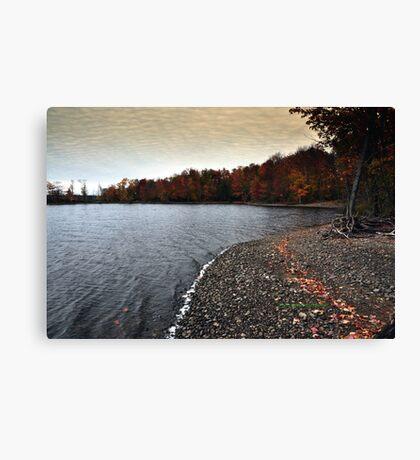 New York's Salmon river reservoir  IV Canvas Print