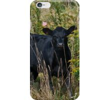 Cows 4 iPhone Case/Skin