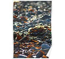 Stone beach Poster