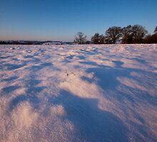 Snow-covered Fields by Stuart Jenkins