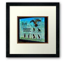Caladesi Island  Signage Framed Print