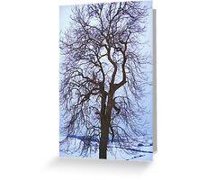 The Snow Tree Greeting Card