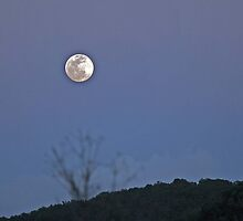Moonrise in Aguadilla by Turtle6