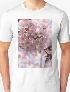 Pink Spring - Gently Pink Cherry Blossoms T-Shirt
