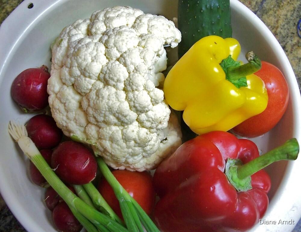 Health Food by Diane Arndt