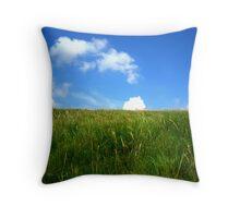 fields under the sun Throw Pillow