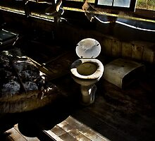 old Toilet by Jeffrey  Sinnock