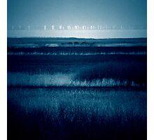 windy Photographic Print