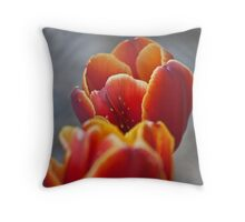 Two Tone Tulip Vignette Throw Pillow