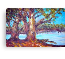 australian bush abstract landscape Canvas Print