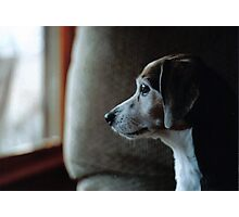 Sprocket through the Window Photographic Print