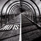 The Tunnel by Daniel Davison