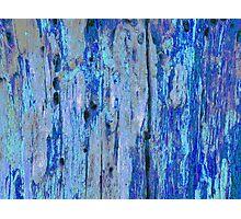 Blue Bark  Oil Photographic Print