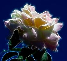 Yellow Rose and Sky - Glow by Doug Greenwald