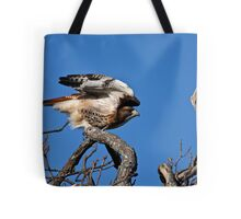 Red-tailed Hawk taking off - Amherst Island Tote Bag
