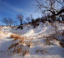 Winter's Afternoon Glow by Curtiss Simpson